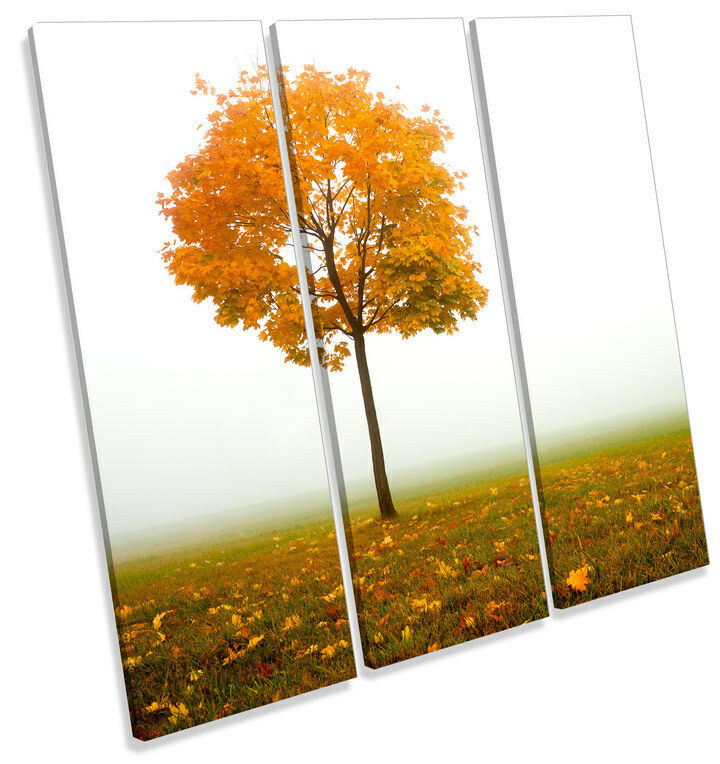 Autumn Tree Misty Landscape TREBLE CANVAS WALL WALL WALL ART Square Picture Print 1c39a7