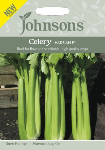 Johnsons Hadrian F1-200 Seeds Vegetable Celery