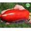 Long Tomato Seeds Edible Vegetable Plant Natural Growth Bonsai Garden 200 Pcs