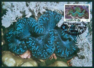 Marschall Inseln Mk 1986 Fauna Riesen-muschel Clam Shell Maximumkarte Mc Cm En49 Um Jeden Preis