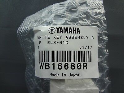 NEW Replacement Piano C F Yamaha Key  Tyros2 Motif XF6 XF7 XS6 XS7 WB16680R