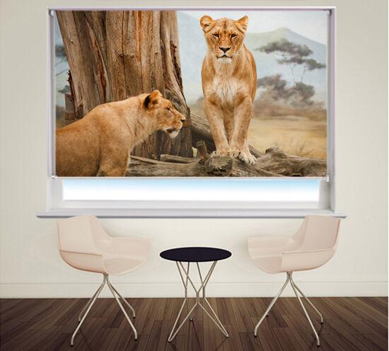 Persiana Enrollable Foto Impresión Digital leones en África Animal Foto negroout Blind