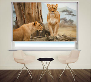 Digital Print Photo Roller Blind Lions in Africa Animal Picture Blackout Blind