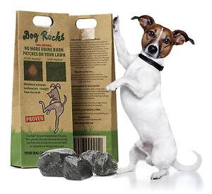 Dog Rocks Lawn Burn Supplement Stop Pet Urine Ruining