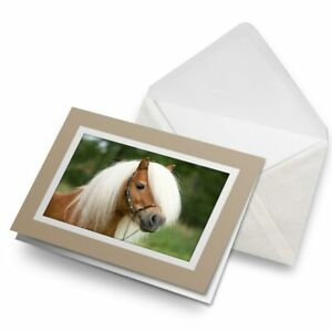 Greetings-Card-Biege-Mini-Shetland-Pony-Horse-15673