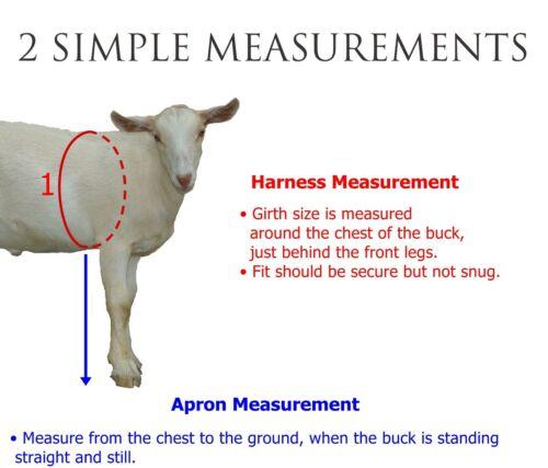 Anti Mating Anti Breeding Beyond Buck Apron™ for Goats//Sheep X-SMALL