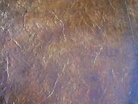Stamped Concrete Accent Stain - Eco-accent. Water-based Floor Color