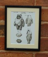 USA Patent Drawing STAR WARS FILM EWOK Teddy Bears  SCI FI MOUNTED PRINT 1985