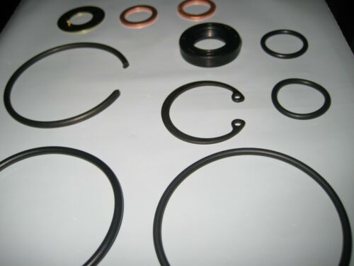 Power Steering Pump Complete Overhaul Seal Kit  #SK560