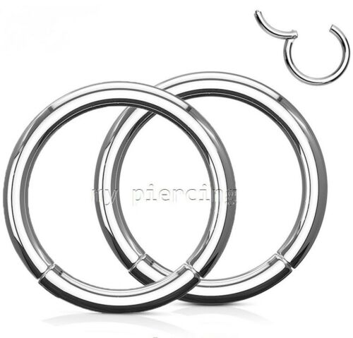 """2x 20G 5//16/"""" Anodized Seamless Hinged Segment Earring Lip Nose Ring Septum Ring"""