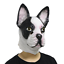Funny Animal Latex Dog Fancy Dress LarpGears Creepy Halloween Costume Mask