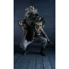 Big SPIDER Man Halloween Costume Mask Venom Black Widow Tarantula Insect Monster