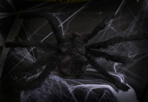 Large Black Spider Présentoir Décoration Halloween 75 cm Lot de araignées Fancy Dress