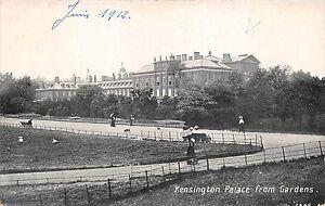 BR58567-kensington-palace-from-gardens-uk