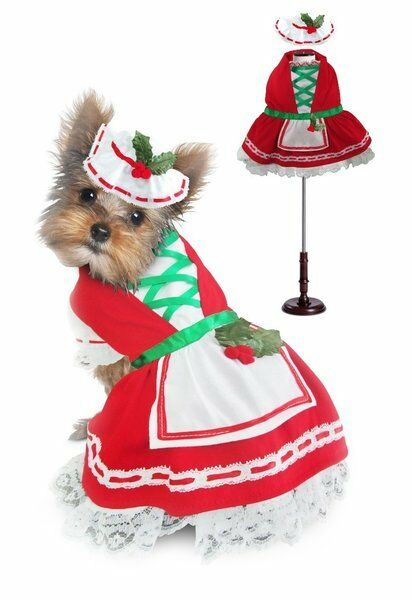 Holiday Dog Dress Dress Dress Holly Christmas Lace Petticoat Skirt & Bonnet rosso bianca verde 28d057