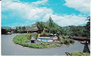 Garberville-CA-034-The-Sherwood-Forest-Motel-034-Postcard-California