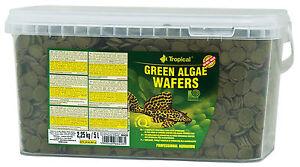 Tropical Vert Algae Catfish Plaquette 5000 Ml Orginalverpackt D'alimentation D
