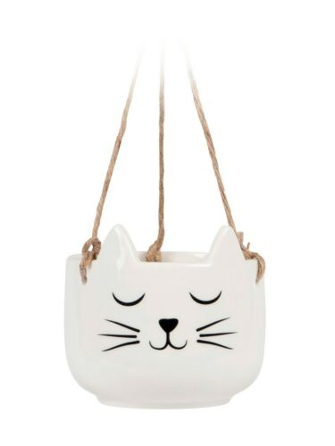 Hanging Planter Ornament Cat/'s Whiskers White 11 x 10 x 11cm