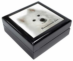 Caja de espécimen Mayorista JOBLOT 50 Claro Redondo Hobby Cajas Joyas Pastillero