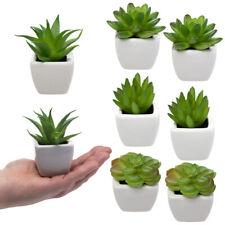 8 Mini Artificial Succulent Lot Plants Fake Succulent Plants Fake Plants Potted