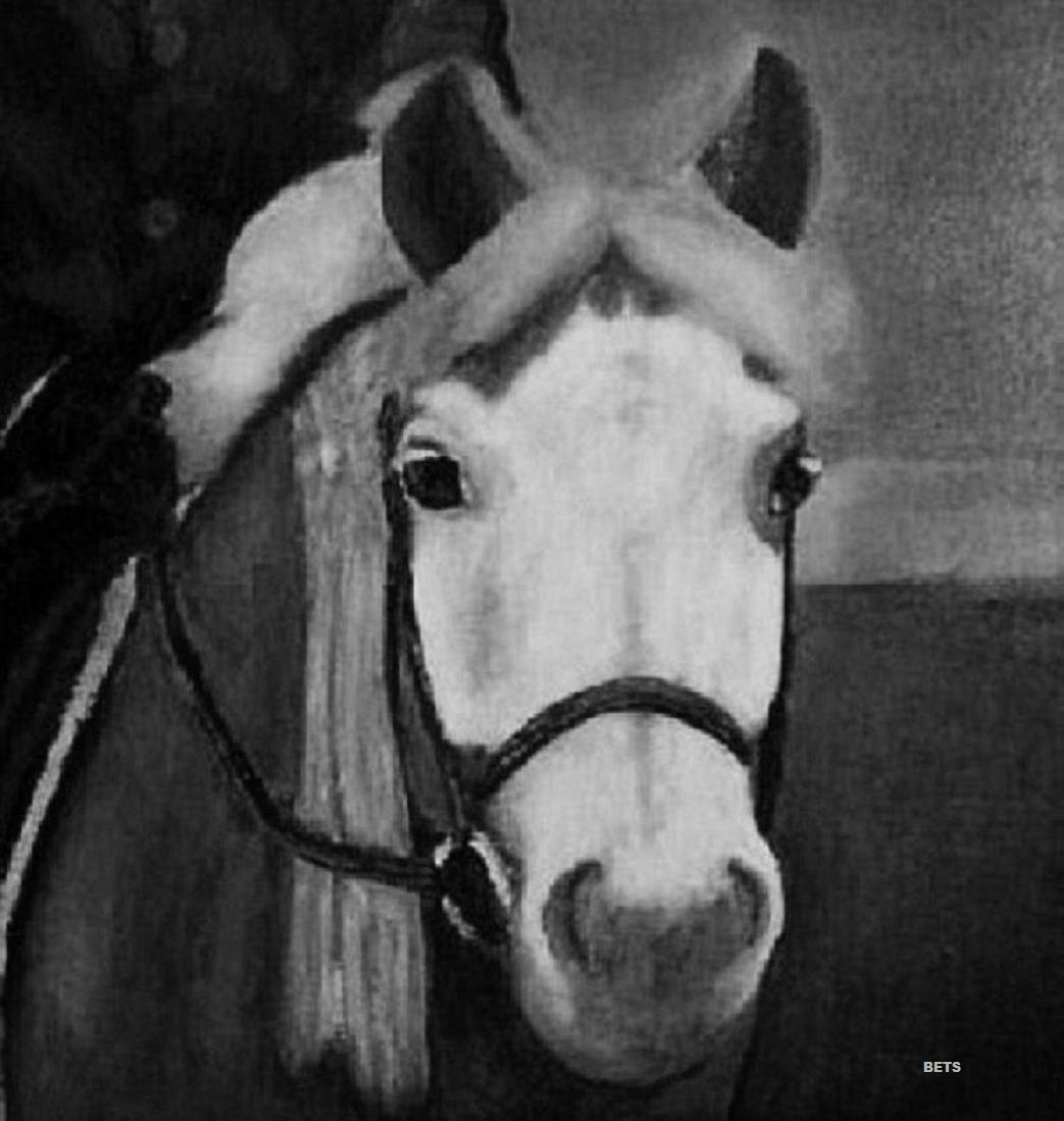 HORSE PRINT Giclee PONY Art FIRST RIBBON artist BETS 4 ColoreeeeeS print Dimensione 14 X 16