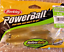 Soft Plastics Berkley Powerbait /& Gulp You Choose