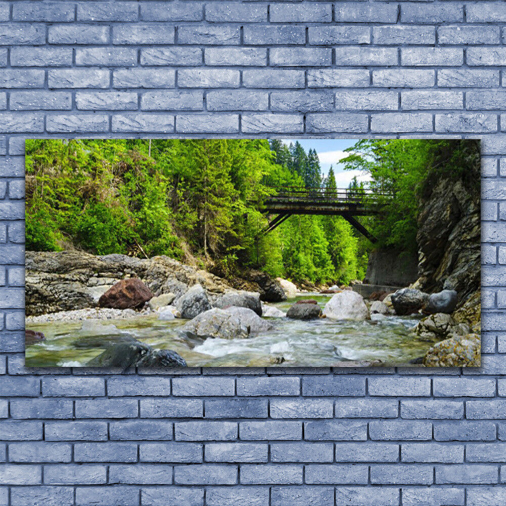 Glass print Wall art 140x70 Image Picture Forest Bridge Lake Stones Landscape