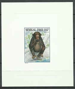 Senegal-Singe-Chimpanze-Monkey-Schimpanse-Epreuve-Deluxe-Die-Proof-Essay-1996