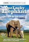 One Lucky Elephant 0829567078921 With Flora DVD Region 1