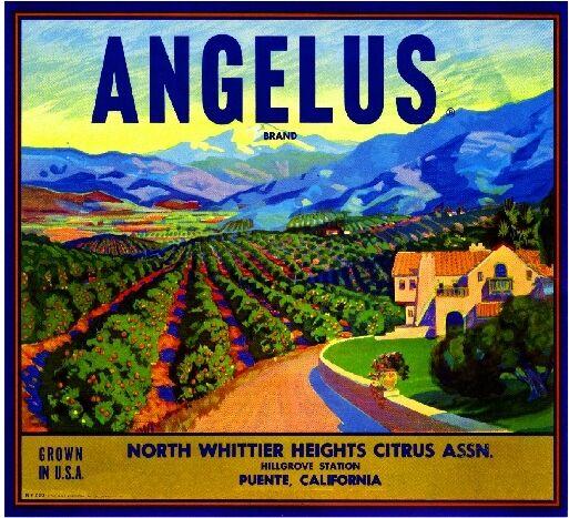 Puente Hillgrove North Whittier Angelus Orange Citrus Fruit Crate Label Print