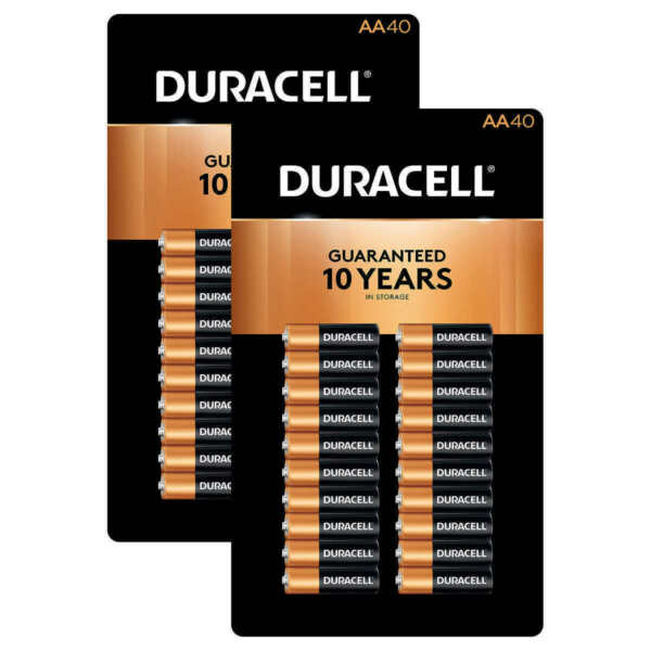 Duracell MN1500 Coppertop 40 AA Batteries for sale online