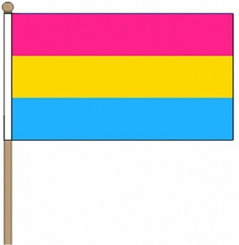 Pansexual Hand Wehende Flagge Gay Pride 22.9cm X 15.2cm