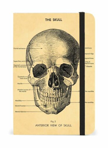 The Skull Small Lined Pocket Notebook 4x6ins 256 Pages Cavallini
