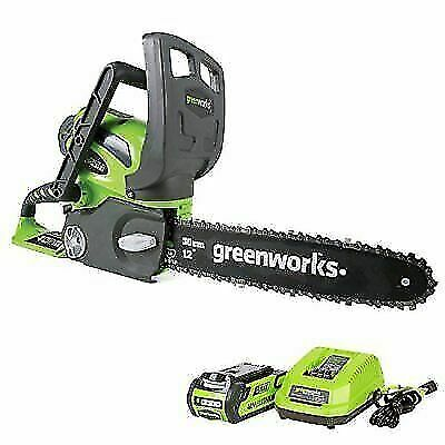 12-Inch 40V Cordless Chainsaw, 2.0 AH Battery and Charger In