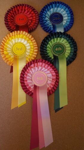 1st to 5th. 3 tier. for dogs,horse,pony,cattle shows, sport days and other event