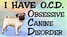PUG - OBSESSIVE CANINE DISORDER Dog Car Sticker By Starprint