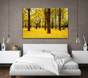 Image Is Loading Large Canvas Wall Art Picture Autumn Forest Yellow