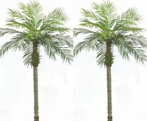 2 ARTIFICIAL 7' PHOENIX PALM TREE PLANT POOL PATIO ARRANGEMENT SAGO DATE COCONUT