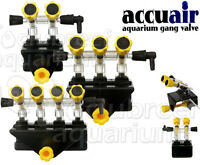Accuair 2, 3, 4 Way Air Gang Control Valve Aquarium/tank Mounted Jw
