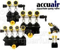 Accuair 2, 3, 4 Way Air Gang Control Valve Aquarium/tank Mounted Jw