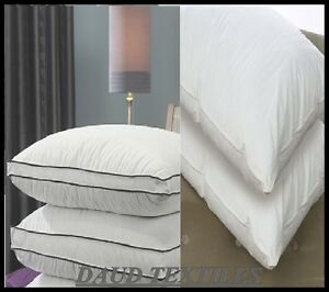 Natural Goose Feather Amp Down Twin Pillow Comfortable Extra