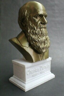 Charles Darwin 12 inch 3D Printed Bust Famous Naturalist Art FREE SHIPPING