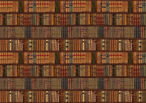 LIBRARY BOOKCASE SHELF SHELVES OLD BOOKS Photo Wallpaper Wall - Old book case