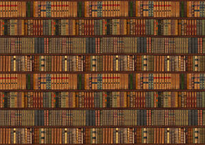 Library Bookcase Shelf Shelves Old Books Photo Wallpaper Wall Mural 335x236cm Ebay