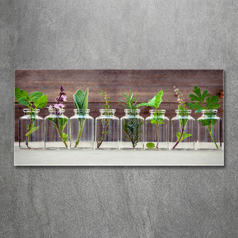 Glas-Bild Wandbilder Druck auf Glas 120x60 Blaumen & Pflanzen Pflanzen in Gläsern