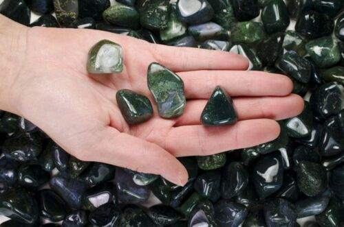 11 Pounds Tumbled Green Moss Agate 'AA' Grade Wire Wrapping, Reiki, Wicca