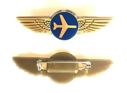 Airlines Pilot Pins Stewardess Wings
