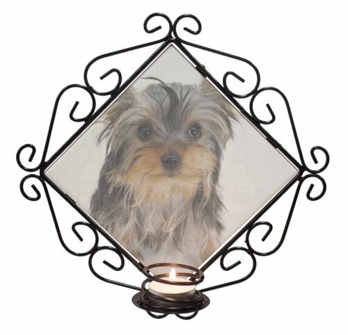 AD-Y7CH Yorkshire Terrier Dog Wrought Iron T-light Candle Holder Gift