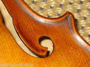 """Industrieux De Très Beaux Vieux Violon Avec Gekehlten F-trous """"petrus Ambrosi"""" Old Violin-afficher Le Titre D'origine"""