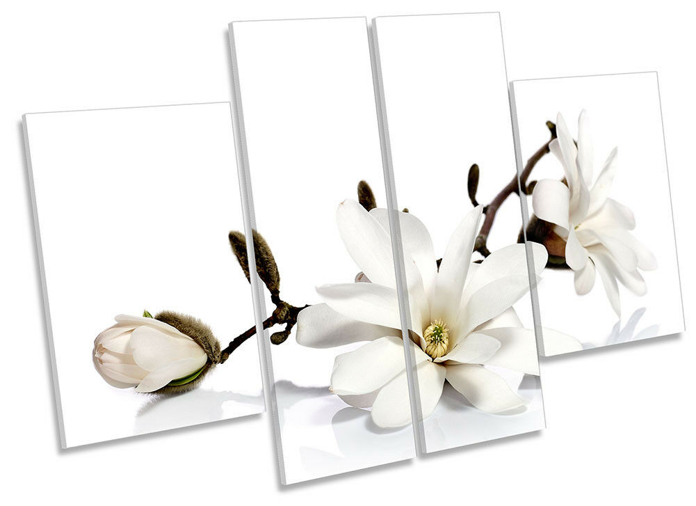 Weiß Magnolia Flowers Floral Picture CANVAS WALL ART Four Panel